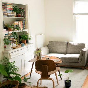 A room with a sofa, bookcase, and coffee table